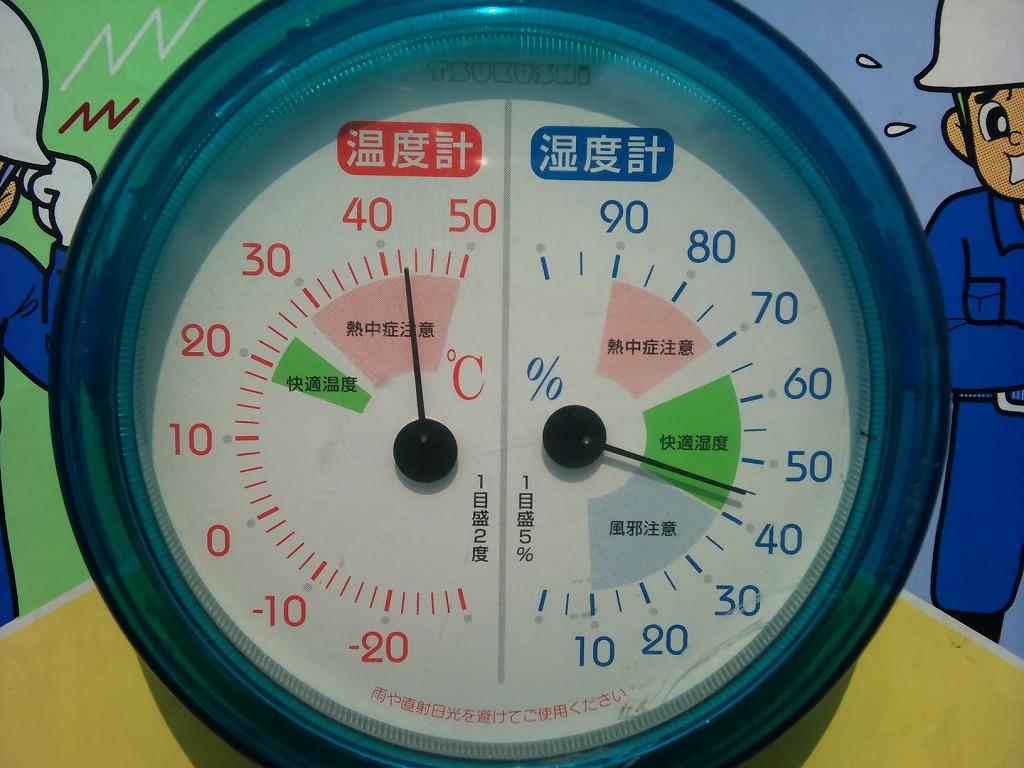 2011-08-14_09.53.49.jpg