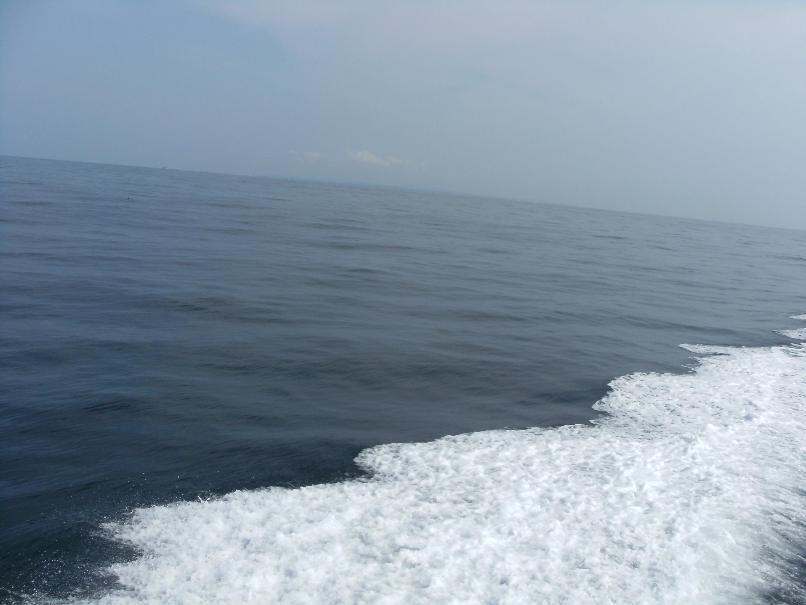 館山沖.JPG